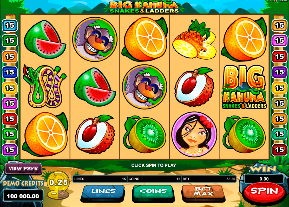 big kahuna snakes and ladders microgaming online gra zadarmo