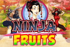 logo ninja fruits playn go gry avtomaty