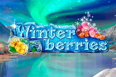 logo-winterberries-yggdrasil
