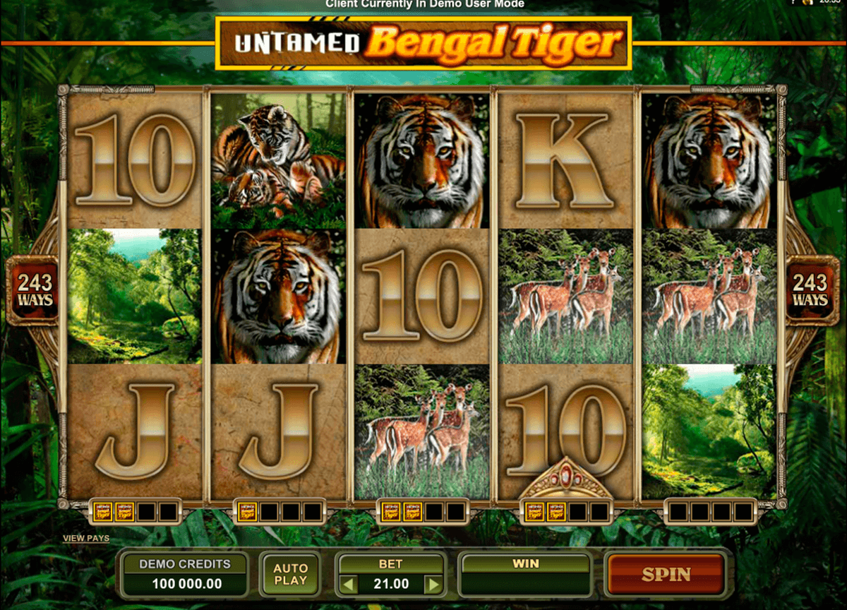 untamed bengal tiger microgaming online gra zadarmo