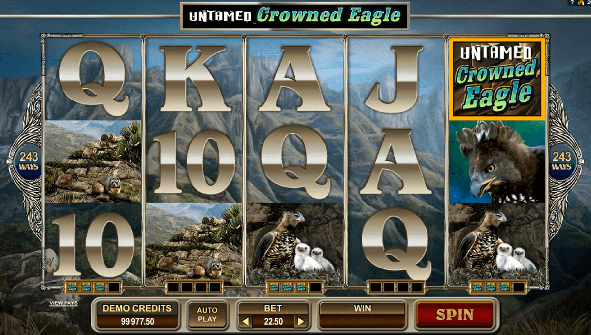 untamed crowned eagle microgaming online gra zadarmo